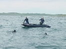 Ron Newcombe and Harvey Morash supervise divers from Harvey's Zodiac off Hay Island, Scatarie Island.
