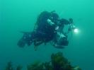 Bob Guertin filming the wrecks of Louisbourg Harbour