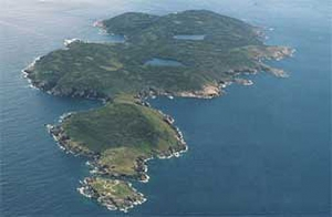 An aerial shot of St. Paul Island